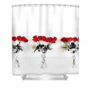 Three Dozen Roses Shower Curtain