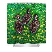 Three Ducklings Shower Curtain