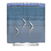 three Egrets Shower Curtain