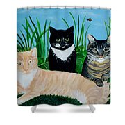 Three Furry Friends Shower Curtain