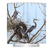 Three Herons Shower Curtain