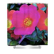 Three Lovely Flowers Shower Curtain