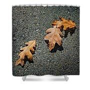 Three Oak Leaves Shower Curtain
