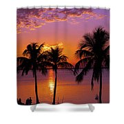Three Palm Trees At Sunset Shower Curtain
