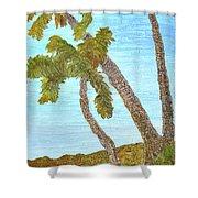 Three Palms At The Beach Shower Curtain