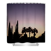 Three Palms In California At Sunset Shower Curtain