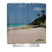 Three Palms Shower Curtain