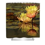 Three Perfect Lilies Shower Curtain