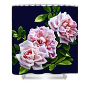 Three Pink Roses With Leaves Shower Curtain