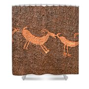 Three Playful Sheep Shower Curtain