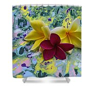 Three Plumeria Flowers Shower Curtain