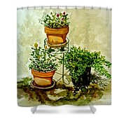 Three Potted Plants Shower Curtain