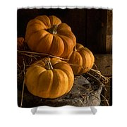 Three Pumpkins On A Bucket Shower Curtain