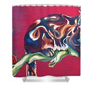Three Robins Shower Curtain