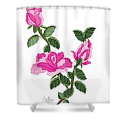 Three Roses In The Garden Shower Curtain