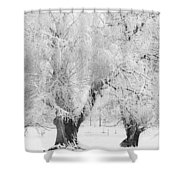 Three Snow Frosted Trees In Black And White Shower Curtain