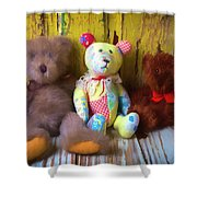 Three Special Bears Shower Curtain