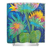 Three Sunflowers In The Mid Summer Night  Shower Curtain
