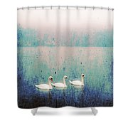 Three Swans Shower Curtain by Joana Kruse