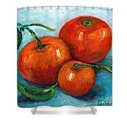 Three Tangerines Still Life Grace Venditti Montreal Art Shower Curtain