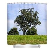 Three Tree Hill Shower Curtain