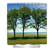 Three Trees Lake Shore Shower Curtain