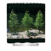 Three Trees Of Ohio Shower Curtain