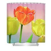 Three Tulips. Shower Curtain