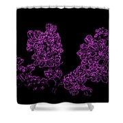 Three Very Purple Lilacs Shower Curtain