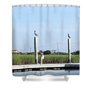 Three Watchbirds Shower Curtain