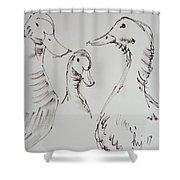 Three White Ducks Drawing Shower Curtain