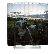 Three Wisconsin Maidens Shower Curtain