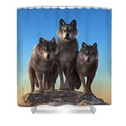 Three Wolves Watching You Shower Curtain