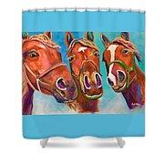 Threes Company Shower Curtain