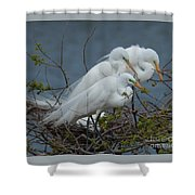 Three's Not A Crowd Shower Curtain