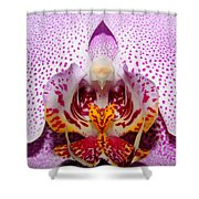 Throat Of An Orchid Shower Curtain