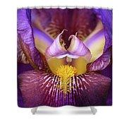Throat Of The Iris Shower Curtain
