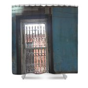 Through The Bars She Saw Her Freedom Shower Curtain