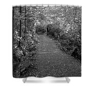 Through The Forest Canopy Black And White Shower Curtain