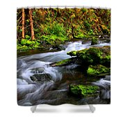 Through The Forest Floor It Flows Shower Curtain
