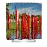 Through The Glass Rods Shower Curtain