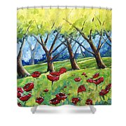 Through The Meadows Shower Curtain