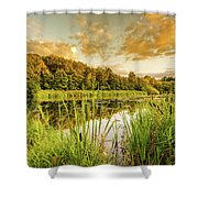 Through The Reeds Shower Curtain by Nick Bywater