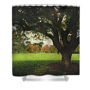 Throw Your Arms Around The World Shower Curtain