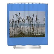 Thru The Sea Oats Shower Curtain