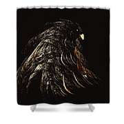 Thunder Bird Shower Curtain