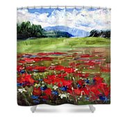 Thunder Clouds Over Bavarian Meadow Shower Curtain