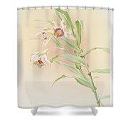Thunia Brymeriana Shower Curtain