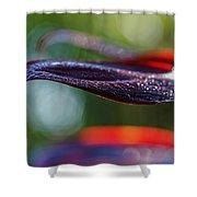 Ti Shower Curtain
