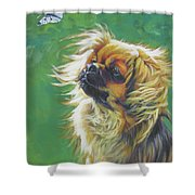 Tibetan Spaniel And Cabbage White Butterfly Shower Curtain